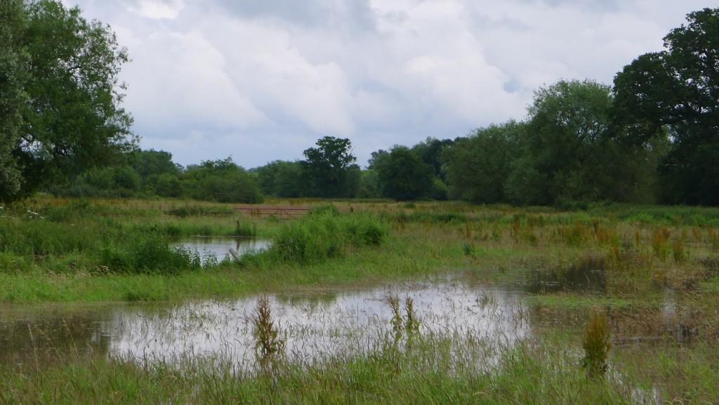 20120707 floodsupleadon