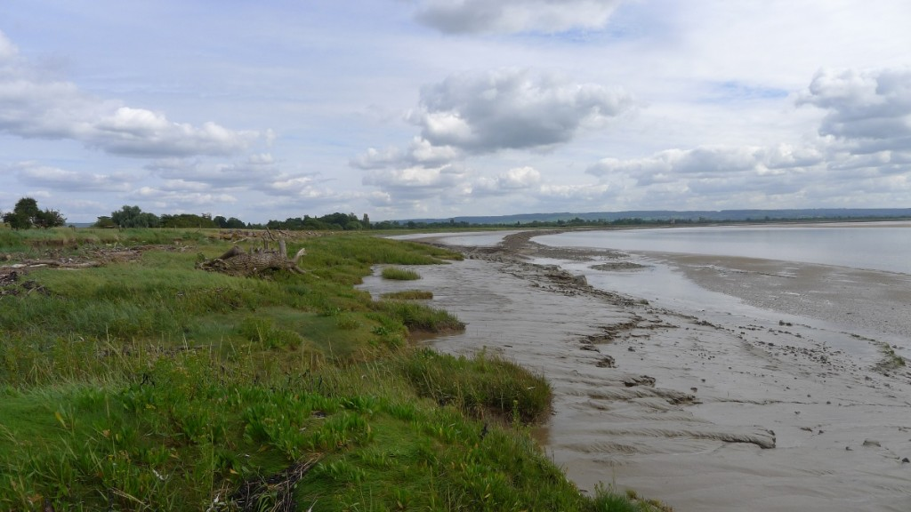 Saltmarsh and mudflats at Fretherne