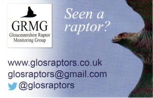 Raptor GRMG