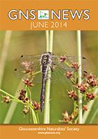 GNS News 201406